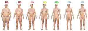 body fat percentage women