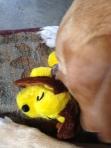 Bobby jealous plushy toy