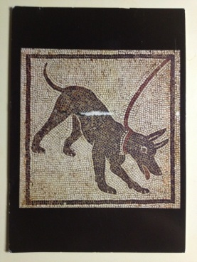 ancient roman dog postcard.jpg