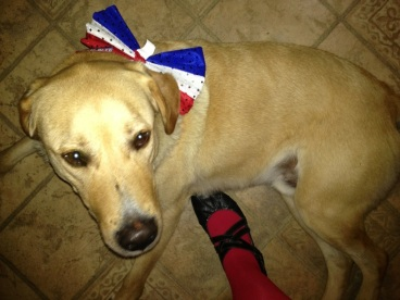 bobby red white and blue bowtie.jpg