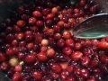 blanched cranberries in syrup.jpg
