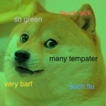 doge such sick fever