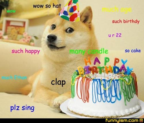 doge birthday celebrate